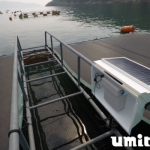 Umitron expands early stage funding to US$11mil   Digital Asia   Latest Technology News