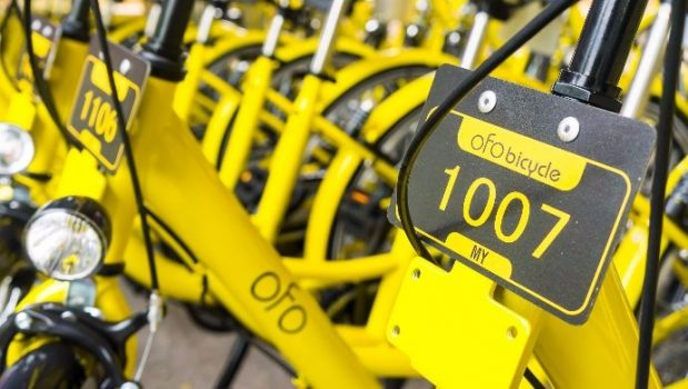 Briefing: ofo denies claims it can't pay employees   Digital Asia   Latest Technology News
