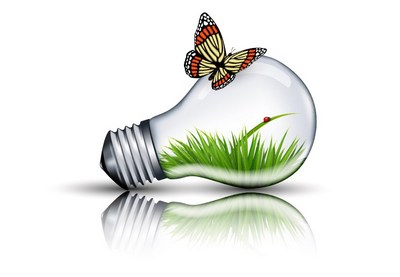 How to Create an Eco Bulb and Butterfly Illustration in Adobe Illustrator | How To | Latest Technology News