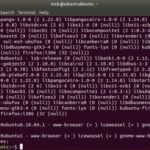 How to Downgrade Software/Package in Linux | Tips & Tricks | Latest Technology News